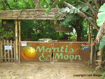 Surfcamp - Manties & Moon2